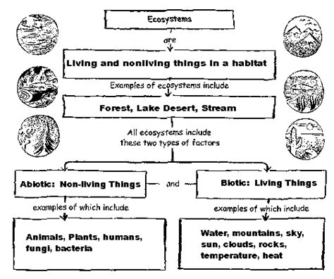 science worksheets ecosystem virus a tiny nonliving particle that invades and then
