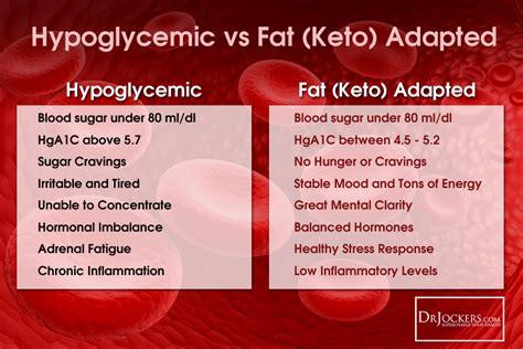 follow  ketogenic diet drjockerscom