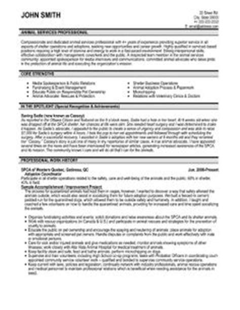 Management Consulting Resume Buzzwords by Resume Sles Management Consultant Essay Quot Money In Our Lives Quot Check This Essay For