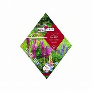 Graminées Vivaces Hautes : fleurs hautes jardin ~ Premium-room.com Idées de Décoration