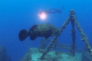 Spiegel Groß Weiß : freediving the spiegel grove the amazing dives of the world wrecks youtube ~ Markanthonyermac.com Haus und Dekorationen
