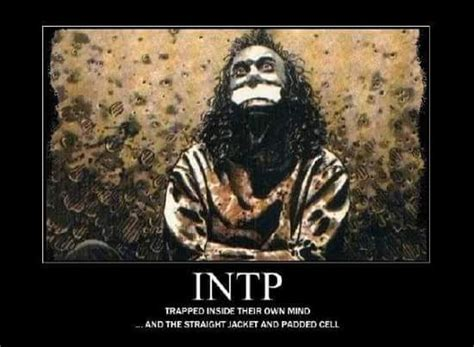 Intp Memes - 17 best images about intp on pinterest to be personality types and intj