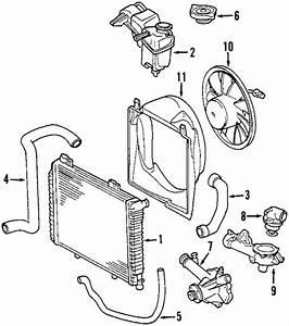 Radiator  U0026 Components For 2001 Mercedes