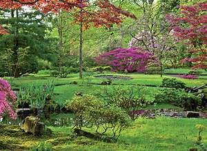 Aménagement Bassin De Jardin