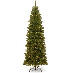 9 Ft Pencil Slim Christmas Tree by National Tree Company 9 Ft North Valley Spruce Pencil