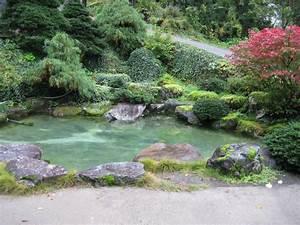 Bassin De Jardin Pour Poisson : koi by koi pompe bassin ~ Premium-room.com Idées de Décoration