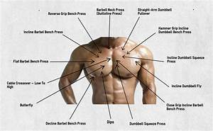 Chest Exercise Angles And Their Effect