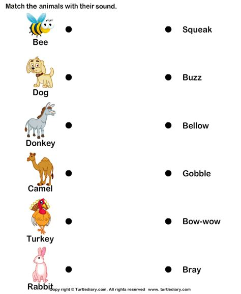 farm animals with sounds worksheet turtle diary