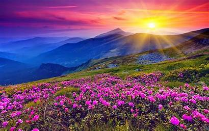 1080p Wallpapers Widescreen Hq Flowers Sunset Maria