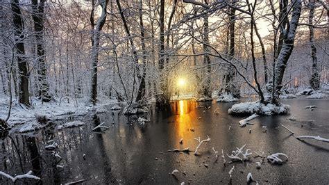 Nature, Landscape, Cold, Winter, Sunrise, Snow, Forest