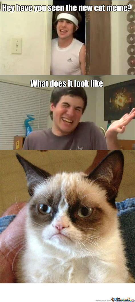 Unamused Cat Meme - unamused cat by bloo meme center