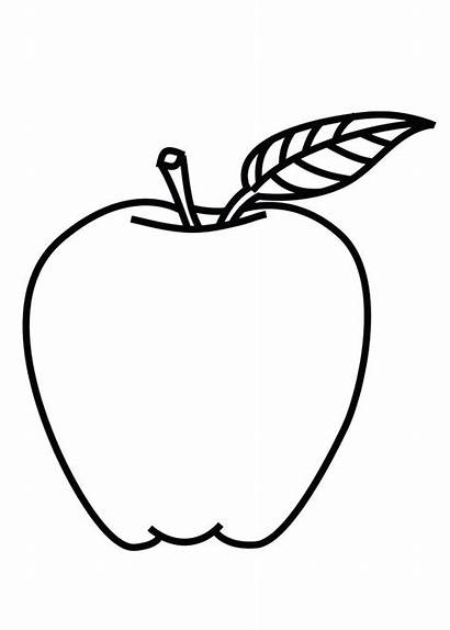 Apple Outline Coloring Pages Drawing Fruit Sketch