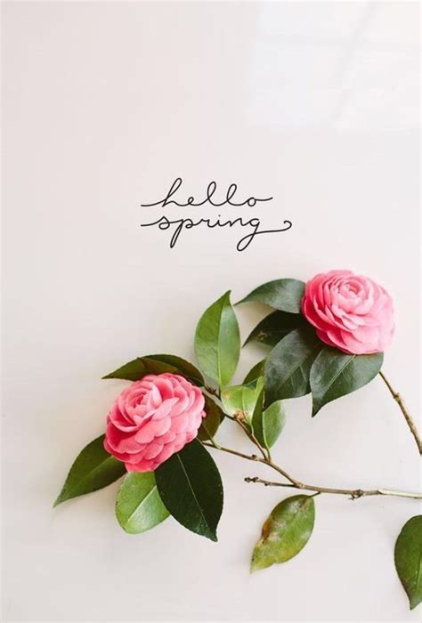 Pretty Hello Spring Pictures, Photos, And Images For