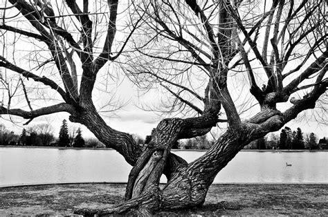 Personal History Of Photography Hanna Bradbury Sense Of