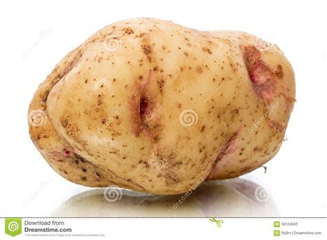 un tubercule de pomme de terre photo stock image 58124603