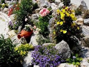 Blumen Für Steingarten : steingarten anlegen so geht es richtig und schnell ~ Markanthonyermac.com Haus und Dekorationen