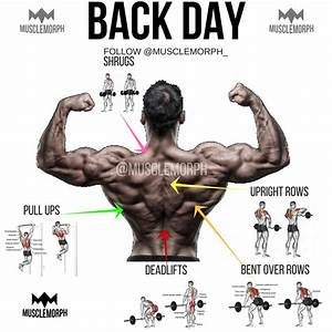 Back Day Back Exercise Back Workout Gym Bodybuilding Fitness Musclemorph
