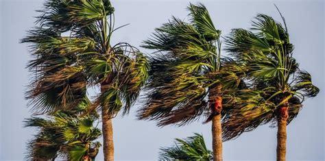 tipos de ventos brisa  alisios ciclones  furacoes