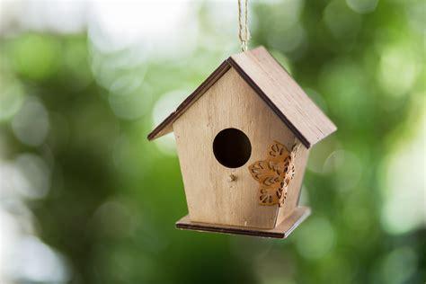 interesting bird houses cool wooden bird houses