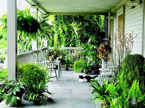 porch trees for decorating small front porch plant covered arch best