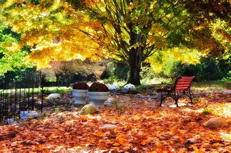 Fall Garden Tips  Fall Gardening Ideas