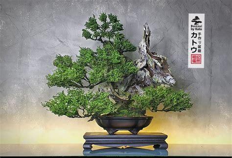Artificial Bonsai #katobonsai #bonsai #บอนไซ #ต้นไม้ปลอม ...