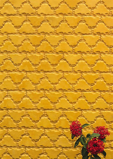 types of wall tiles wall covers