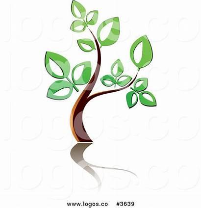 Reflection Clipart Tree Graphics Royalty Seamartini Logos