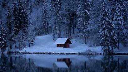 Winter Snow Forest Lake Background Ultrawide Trees