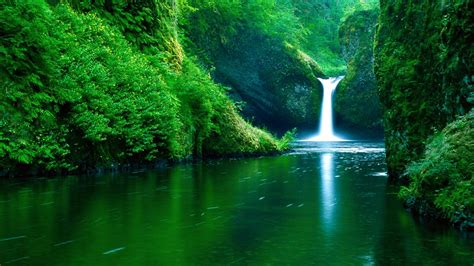 waterfall water nature landscape green river forest