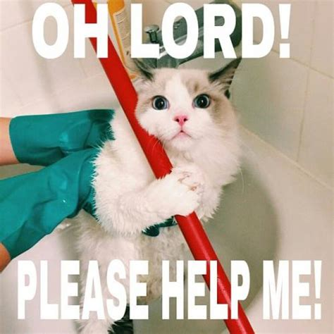 Oh Lord! Please Help Me