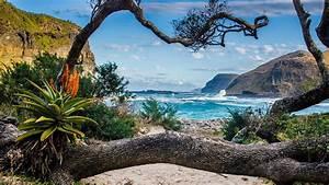 Forum Croisiere Ocean Indien : croisi re d afrique l vasion en terres sauvages blog croisi re de luxe ~ Medecine-chirurgie-esthetiques.com Avis de Voitures
