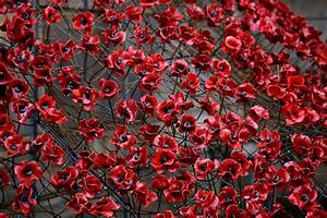 It's almost Remembrance Sunday again, so people are ...
