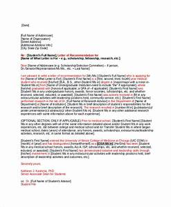 Fellowship Recommendation Letter 27 Letter Of Recommendation In Word Samples Sample