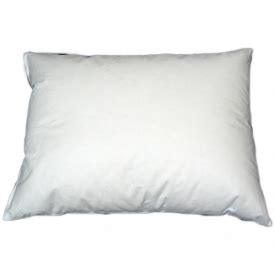 Small Bed Pillows by Pillows From Volga Linen Small Pillow Pad 100 Cotton