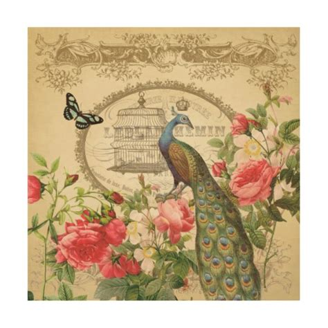 shabby chic prints vintage french shabby chic peacock wood prints zazzle