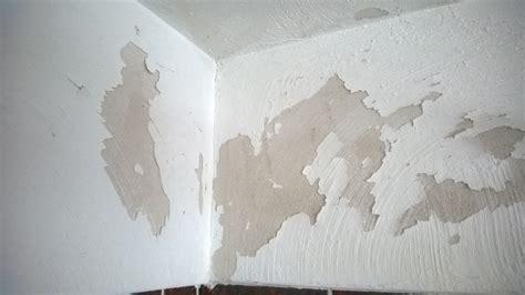 Alte Fassadenfarbe Entfernen by Wie Abgebl 228 Tterte Farbe 252 Berstreichen Heimwerken