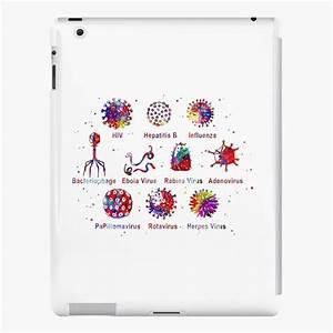 Wiring And Diagram  Diagram Of Virus