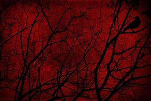 Red Forest Background by Komtess-Narbenherz on DeviantArt