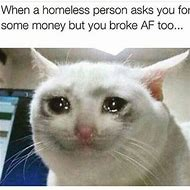 Sad Crying Cat Meme