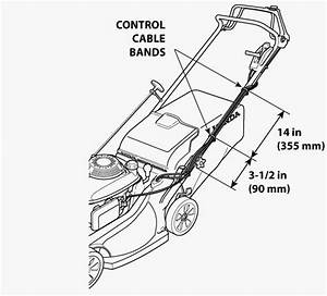 Honda Lawn Mowers  Maintenance And Support