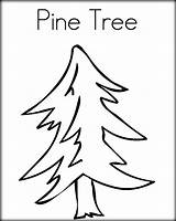Pine Tree Coloring Pages Line Drawing Nc State Trees Outline Print Green Boom Chicka Drawn Getdrawings Twistynoodle Favorites Login Cursive sketch template