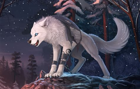 Wolf Anime Wallpapers - wolf animals wallpapers hd desktop and mobile