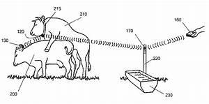 Patent Us8066179