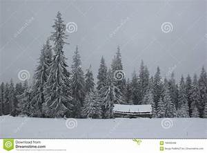a, lonely, house, in, a, snow