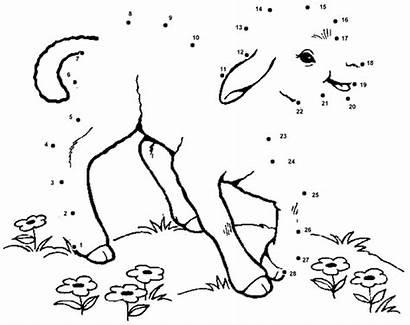 Dot Sheep Sunday Lamb Dots Shepherd Sermons4kids