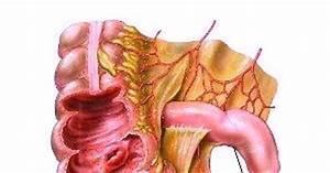 Recuperare dupa operatie de apendicita, archives