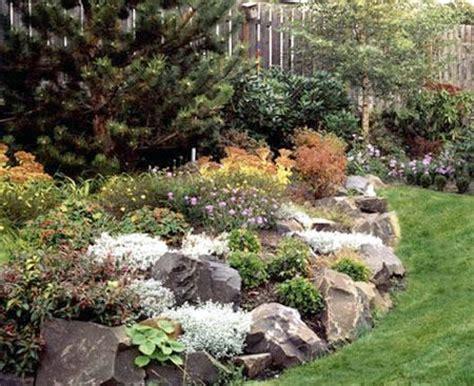 best 25 rockery garden ideas on