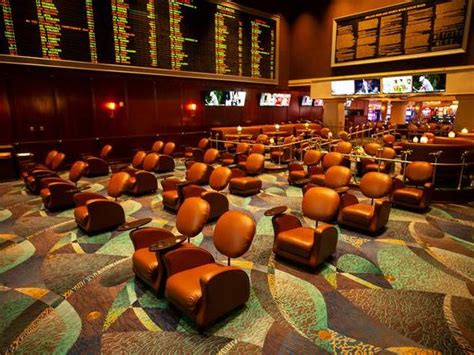 College football by the odds: Vegas picks and preview of ...