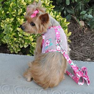 Cool Mesh Dog Harness By Doggie Design